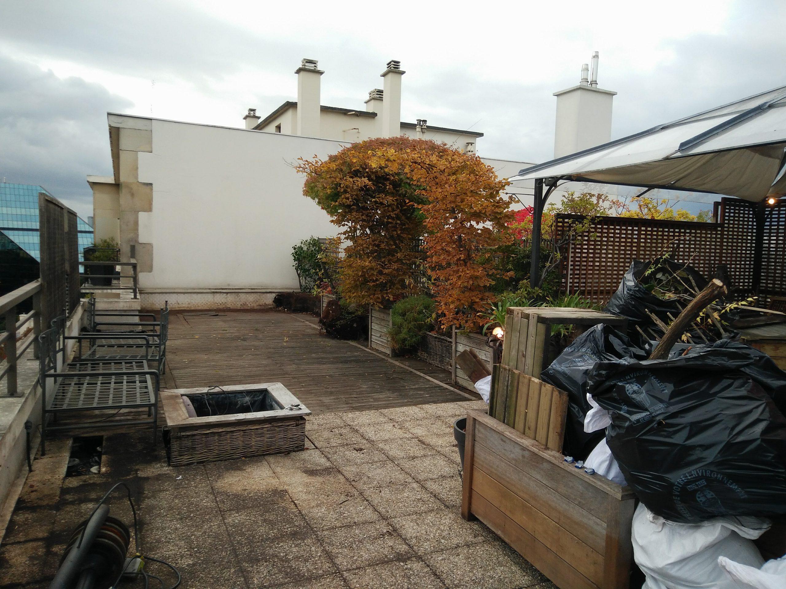 Paysagistes rooftop plantes
